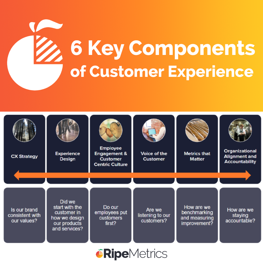 6 Key Components to Customer Experience