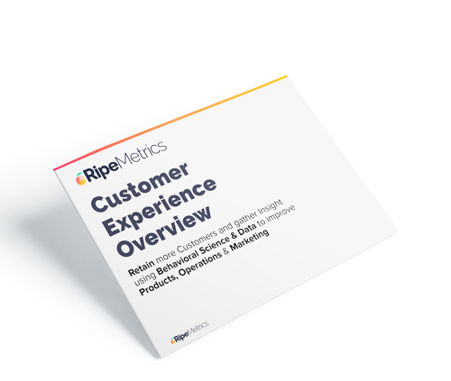 Customer Experience Overview